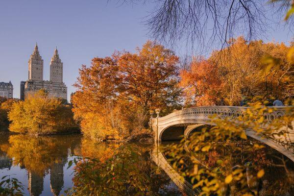 纽约中央公园弓桥